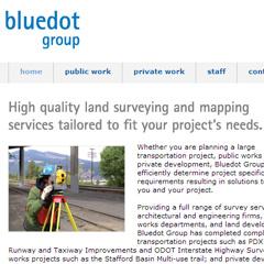 BlueDot Group