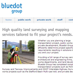 BlueDot Group